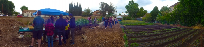 Cottonwood Urban Farm MTB Ramble
